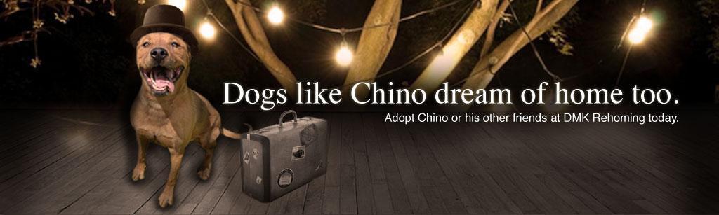 Chino Slide