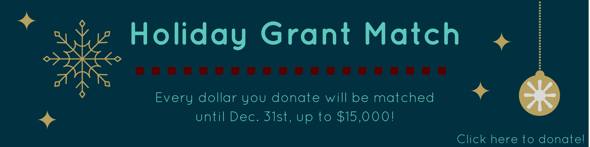 2017 Holiday Grant Match